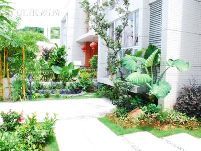 我家的小花园
