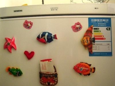 在冰箱上,一天到晚游泳的鱼儿们。。。。。。