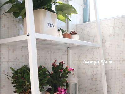 因为整理风格偏浅,设计师在饰品的搭配上运用了条纹的抱枕以及鲜花,让整个空间活了起来。阳台,园艺工具。搪瓷汤锅,陶瓷竹木调料罐套装。