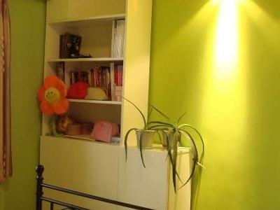 卧室床对面的书柜和暂时没电视的电视墙 书柜下面现在芦荟占着的位置是计划放DVD的,左上角那块白板子后面是空调管(恶心的开发商让客厅的空调管经过卧室再到阳台上)