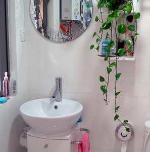 漂亮的镜子和枝蔓婀娜的绿萝