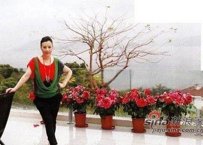 汪明荃清水湾豪宅曝光 大谈与罗家英婚后生活