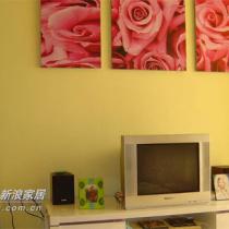 电视柜上的装饰画,我选的