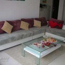 喜欢沙发和地毯的颜色