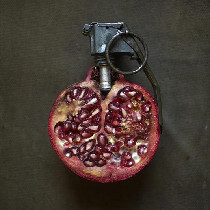 有趣的果蔬创意玩意