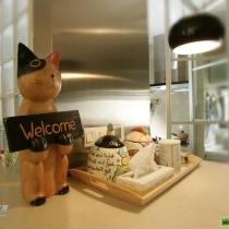 但是还是米有忘记给我的welcome猫猫和大爱的彩绘装饰盘,都是LG每次出国辛苦收集回来滴 现在终于可以登台亮相了