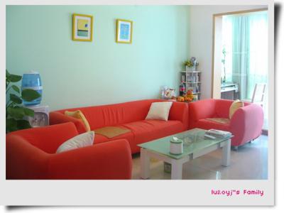 沙发。已经两年罗,越洗越新,艳色比较耐新。