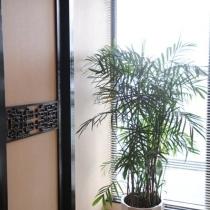 书房用了竹百叶窗帘,绿色的!照片好象有点灰色了