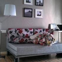 隐形门里面,书房暂时唯一的一张,沙发床超方便实用!落地灯质量刚刚的!超赞!!照片里可搬动的,除了电脑以外,其他都是TB!