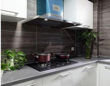 厨房以白色为主.放上一些小植物 也是很有生趣的。