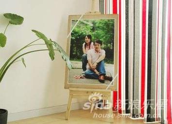 沙发的对面,客厅的一角,是我们自己拍的照片~~