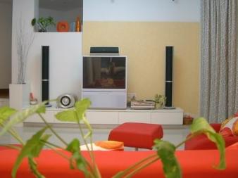 这是我的客厅,坐在沙发上看到的电视背景墙。