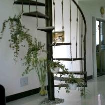 绿色植物装扮的楼梯