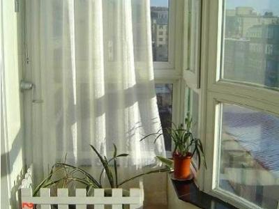阳台想做个袖珍植物园,做个木栅栏,木匠对付了一个,算了~~ 枫树落叶了,春天又会充满生机~~
