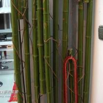看,偶们自制的竹子隔断,小铁钩子可以随便挂哪都行,如果要挂的东西重,钩子就可以放在竹节里,如果轻就可以挂在藤条上,小钩子一元一个。呵呵