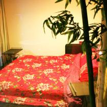 在小花园看到卧室的红色,感觉蛮好