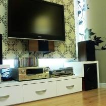自己设计的视听柜,倒不是不想买现成的,只是因为背景墙太短,只能叫木工做。这不,低音炮的位置是含分含水刚刚正好