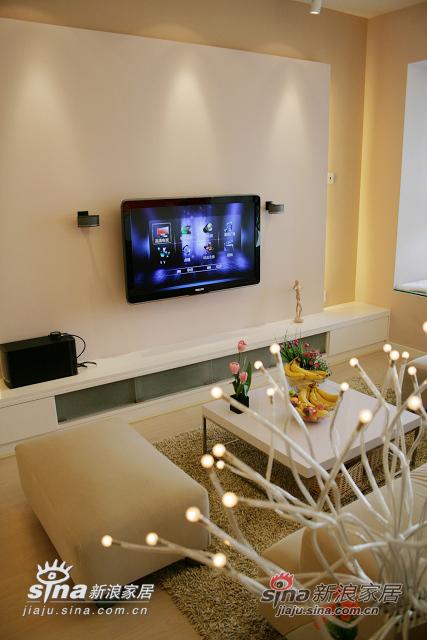 使用飞利浦42寸1080P高清电视,用来连接天威高清数字信号以及电脑高清信号(预埋了10米的HDMI线),使用BOSE C5电脑音响改装为家庭影院音响