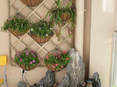 阳台中做了一个花架和鱼池,算是一个比较有特色的设计
