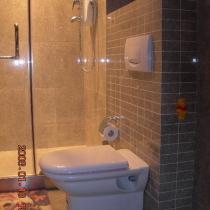 这套挂厕简单但很贵,怕工人弄坏,全是自己装的。