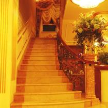 楼梯的花也是我买的