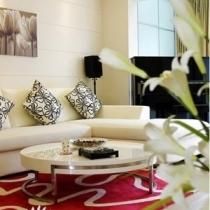 沙发上的靠垫是千挑万选后决定的,感觉大气又亮丽