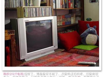 我的29寸电视:没钱了,液晶是买不起了,还是用这旧的吧,可是房间太小,没地方放了,只好在书架上卸下一块板,掏了个洞,居然放下了我的大电视,而且在对面的沙发上看,角度远近都适宜,真的很不错呢……