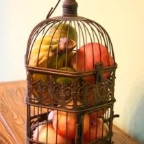 没有小鸟的鸟笼,拿来装水果倒挺不错,又透气又好看