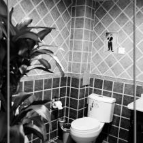 一层卫生间,这个瓷砖画嵌到瓷砖里还是很麻烦的!感谢耐心的老瓦工!家里的瓷砖贴的没话说!