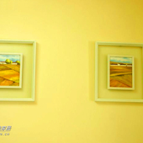再看看客厅的两幅画,是现在比较流行的那种,一套是100块,也是在艺展中心买的