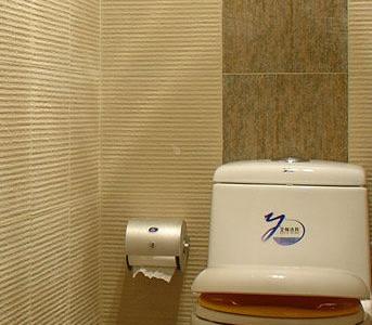 现在的卫生间改成了马桶,考虑到宝宝,选用的子母盖的类型。墙面用的仿石纹的仿古砖,没有腰线,只用一道幻彩的仿古砖作了纵向的装饰