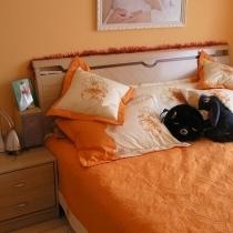 橙色的卧室,很温馨