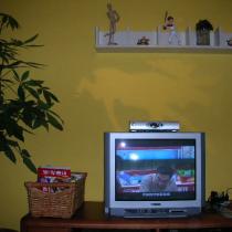 俺家的电视机坏了,凑和卧室的那个,俺要等到液晶跌到肉里再买,:P 俺胖子老公说我老沙额(说俺小气)