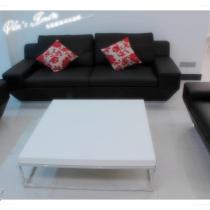 标卓的沙发,刚好赶上特价,比较实惠。茶几是康耐登里头最经典的一款。