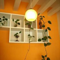 饭厅一角,用了能激起食欲的橙色