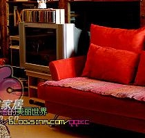 """舒适的沙发,我在上面看书,葱在上面""""画地图""""~~"""