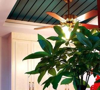 饭厅吊顶,风扇灯。