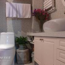 马桶和浴柜