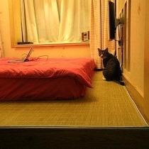 嗬嗬...又见榻榻米...我们的卧室...简单到只有一张床垫...这就是原本的书房,够小吧,可是足够放进一张够大的king size床垫哦