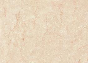 维罗地面抛光砖各拉丹东系列YQP003(800×800mm)