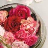 雅帝壁纸一支玫瑰系列220070709052124