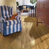 圣象新实木康树系列KS8340荷兰桉木实木地板