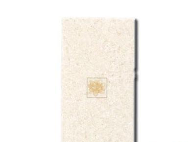红蜘蛛RY68009Z墙砖(花片)RY68009Z