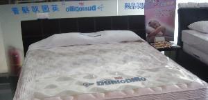 邓禄普RS进口床垫R.S床垫