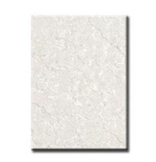 红蜘蛛瓷砖-墙砖RY43004(300*450MM)