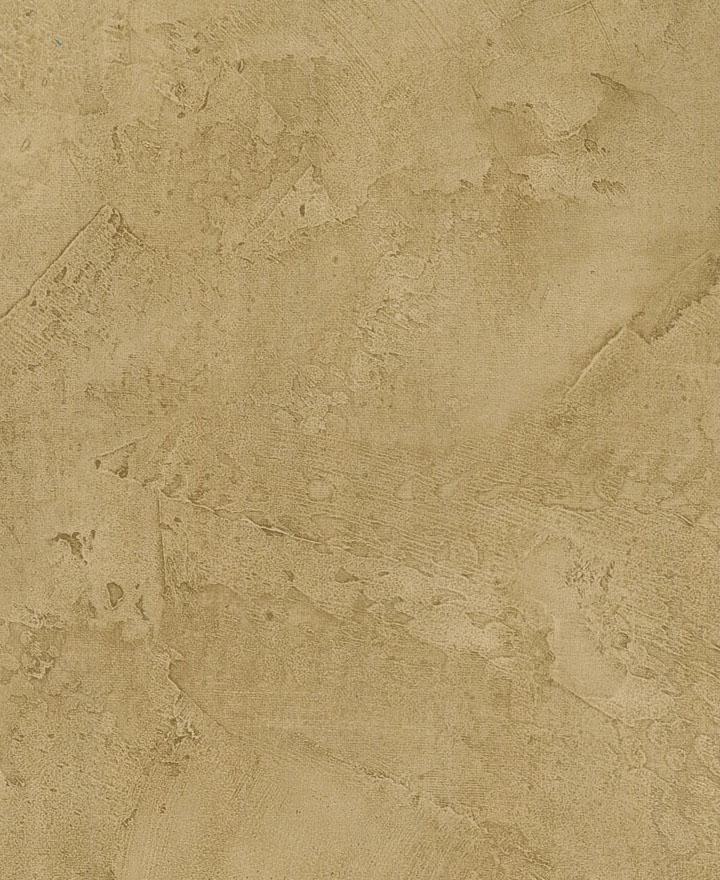 格莱美TB53107丛林之旅壁纸TB53107