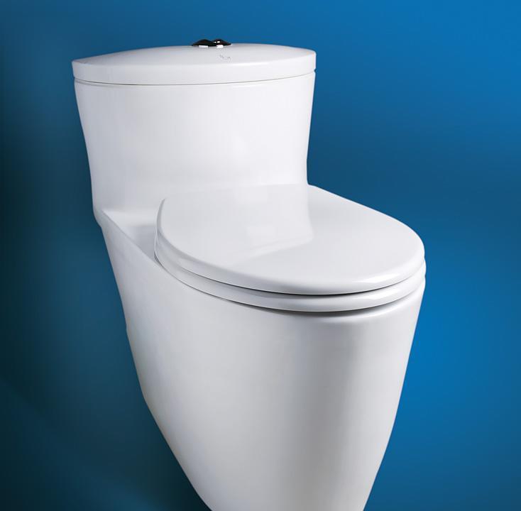 乐伊马桶Toilet诺丁山系列T109CT109C
