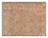 金意陶165514地砖165514