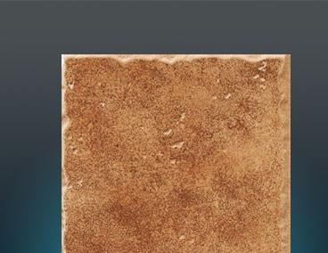 欧神诺艾蔻之提拉系列EF25515地砖EF25515