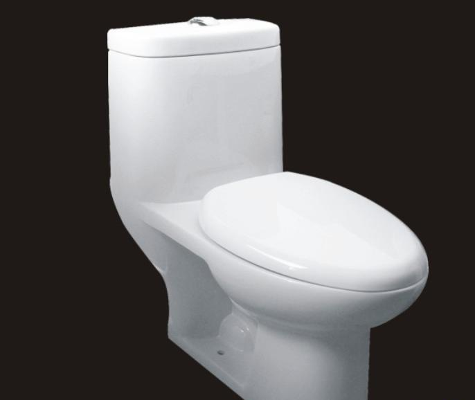 成霖高宝连体坐厕GC-L183GC-L183